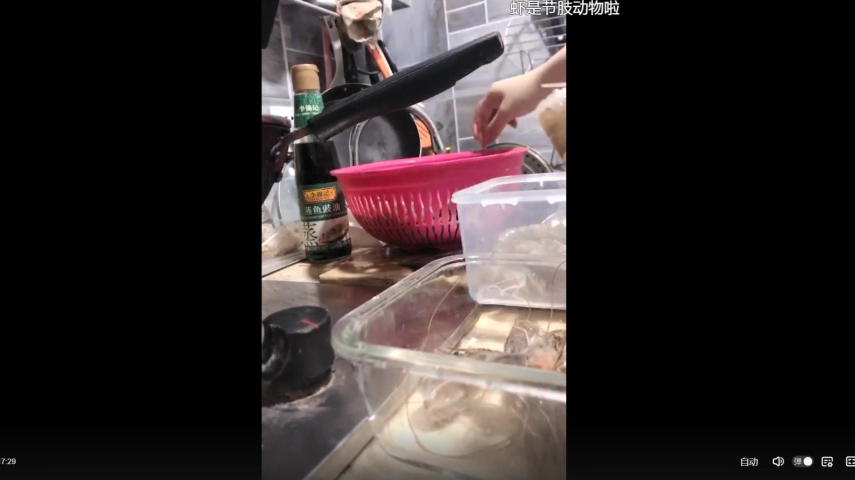 【整活】如 何 做 虾