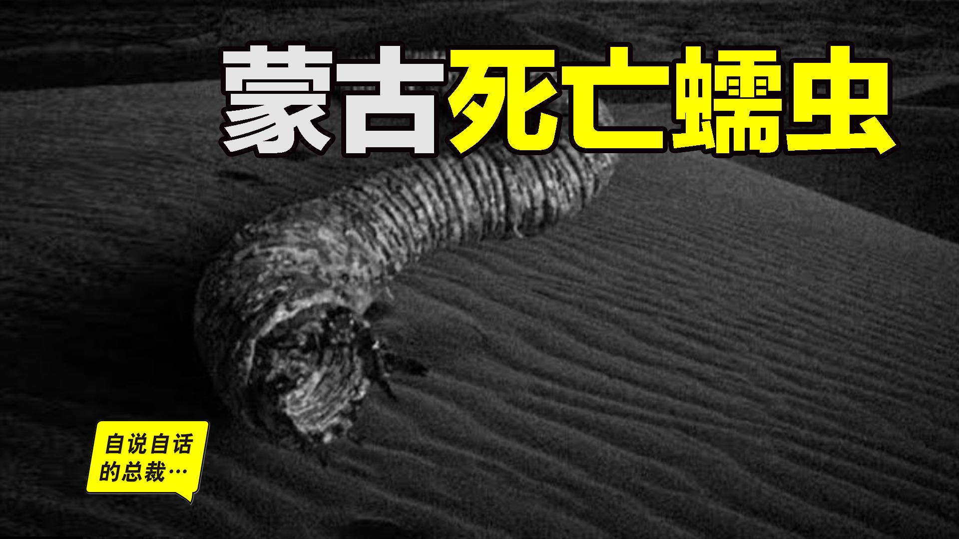 神秘未知生物蒙古死亡蠕虫:跟着它就能找到成吉思汗的宝藏