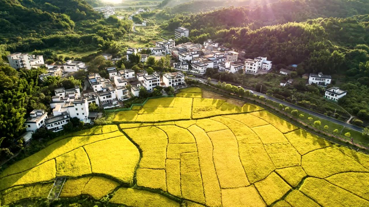 温铁军:农村资源活化,走出发展死局
