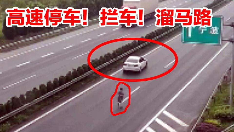 【事故警世钟】702期:美女高速停车!拦车!看路标牌,这驾照是捡的吗?