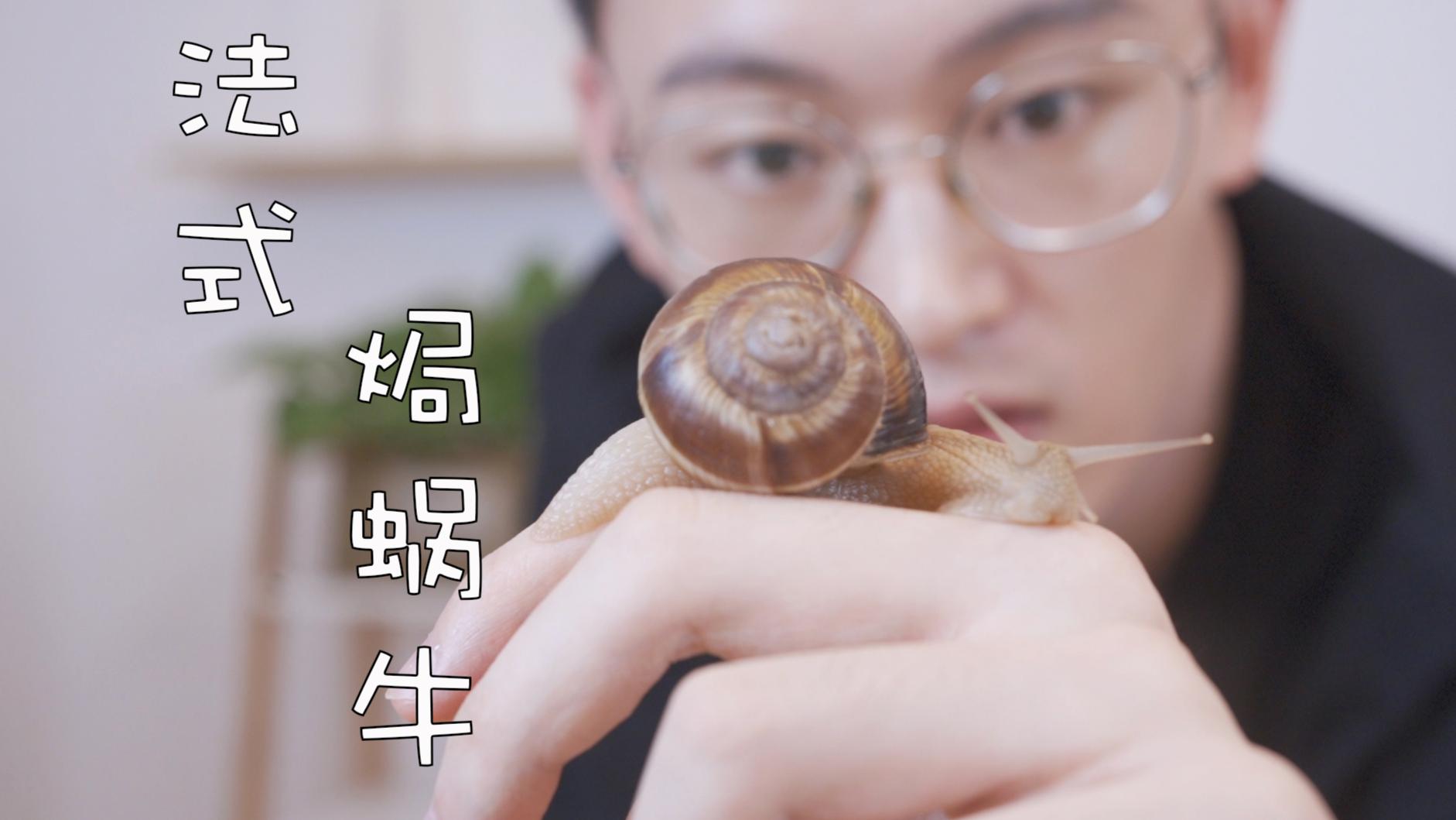法式焗蜗牛—到底什么样的蜗牛才能吃?
