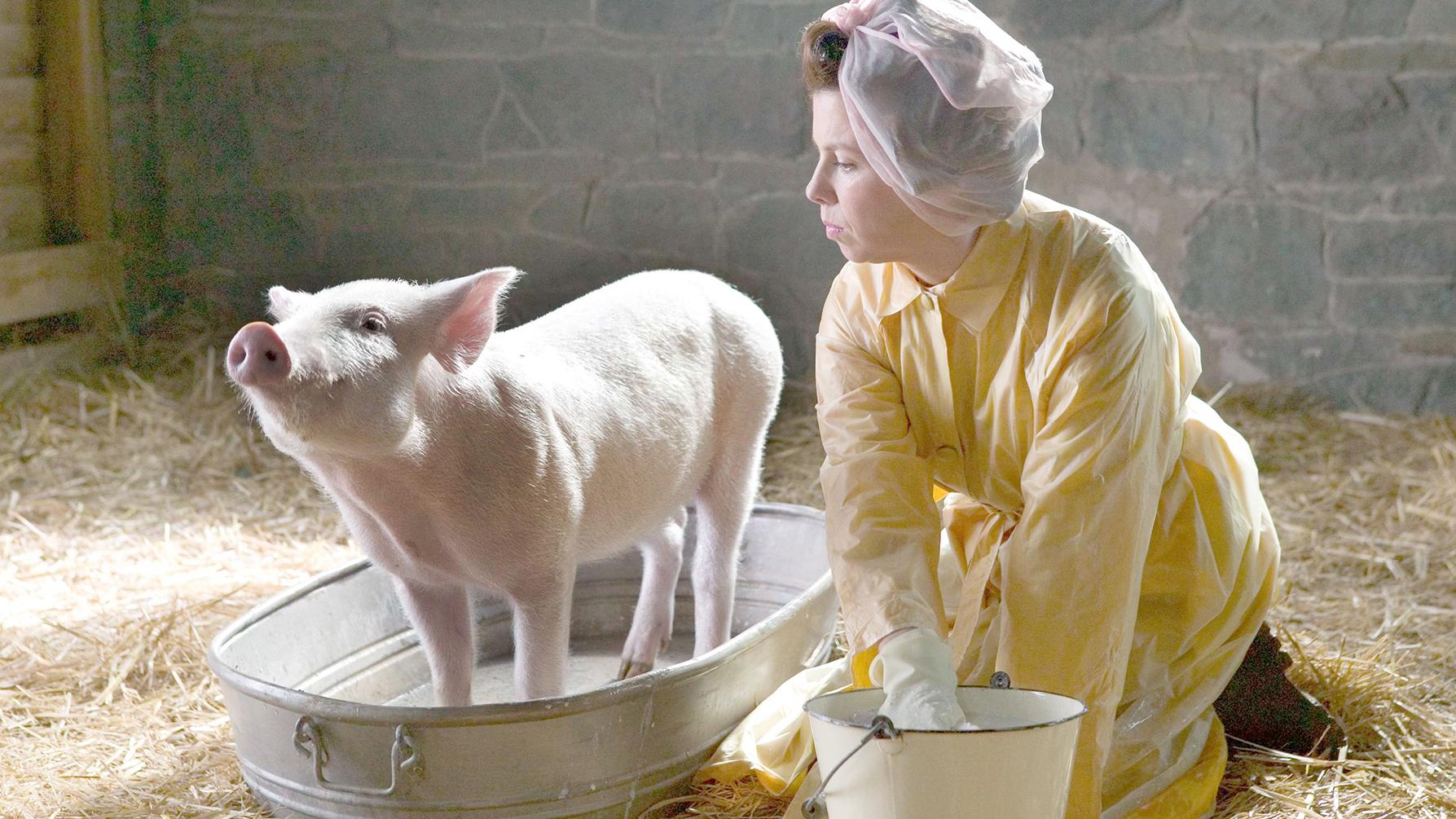 一头小猪,害怕自己被做成熏肉,努力活成了一个奇迹!速看奇幻电影《夏洛特的网》