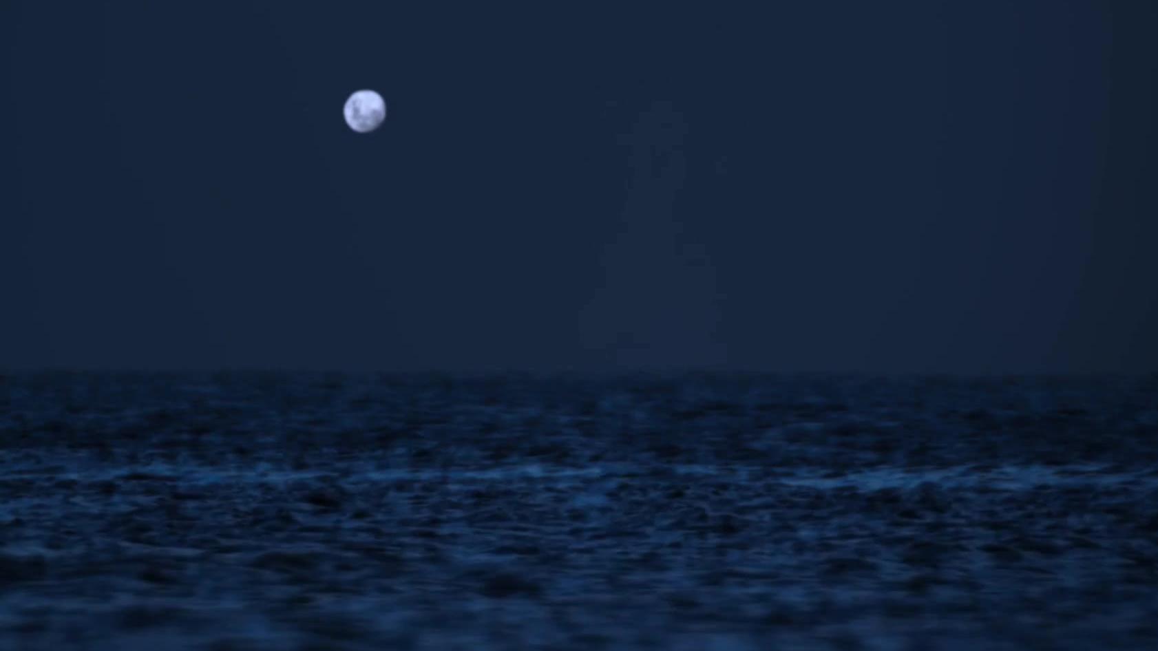 【纪录片】【地球的夜晚:黑暗的海洋】【S01E04】【1080p】【中字】【2020】