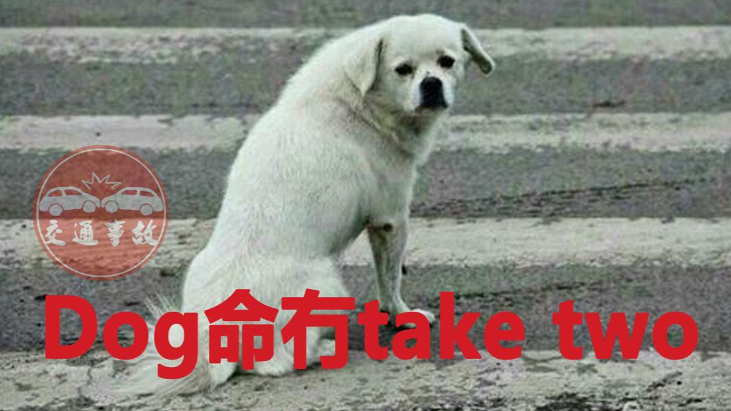 Dog命冇take two