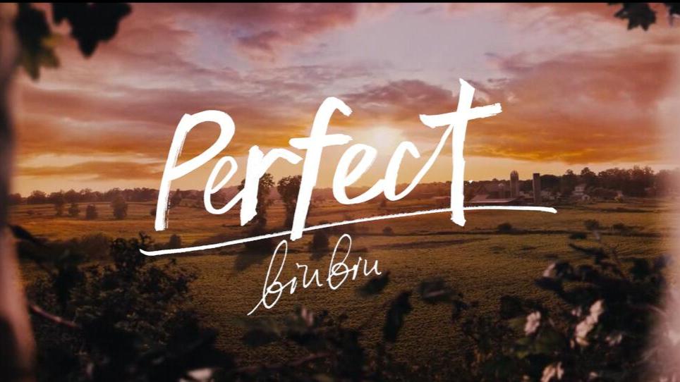 【翻唱】Perfect - Ed Sheeran【可能成为唯一投稿的初投稿】