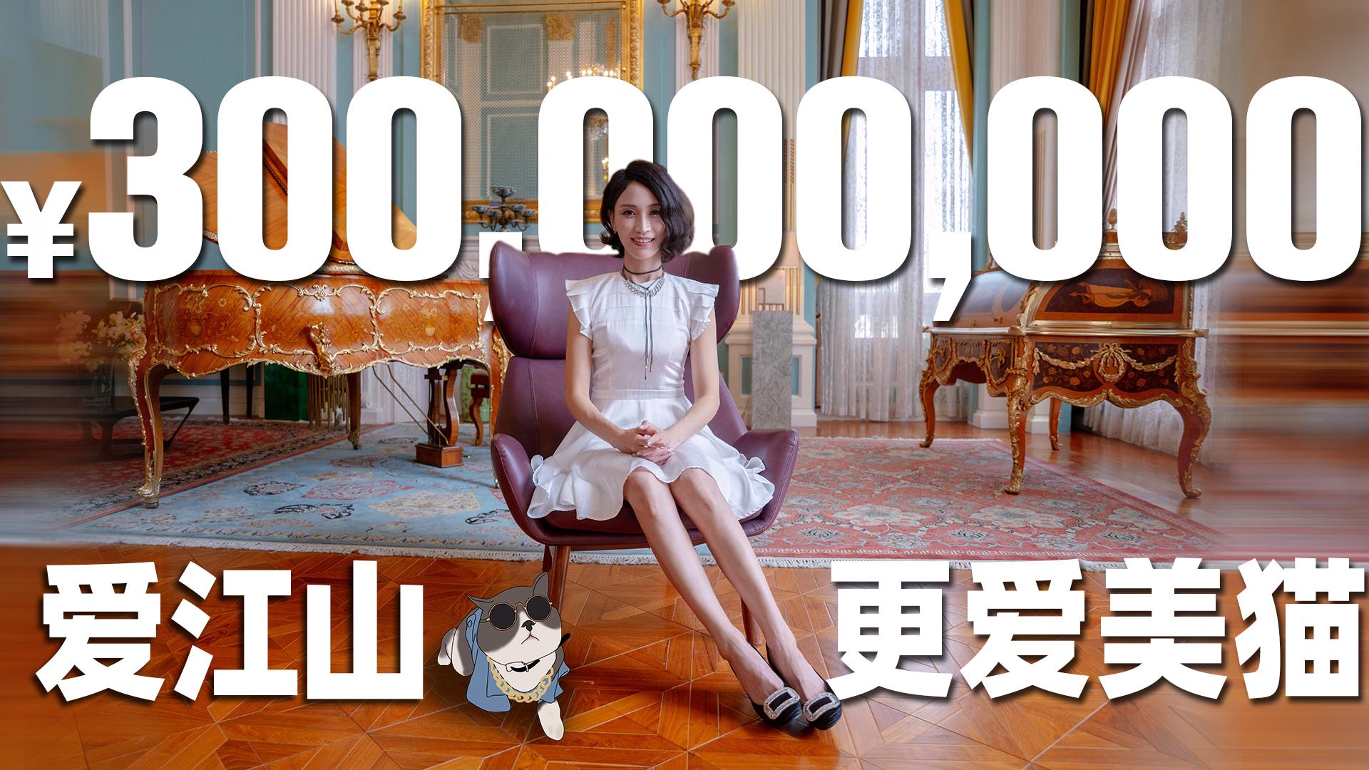 给猫买了3亿豪宅:一个铲屎官的自我修养