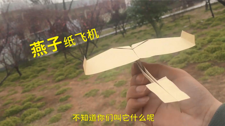 """一个""""神奇""""的纸飞机,全程全靠飘,80%的人都见过,却很少人会"""