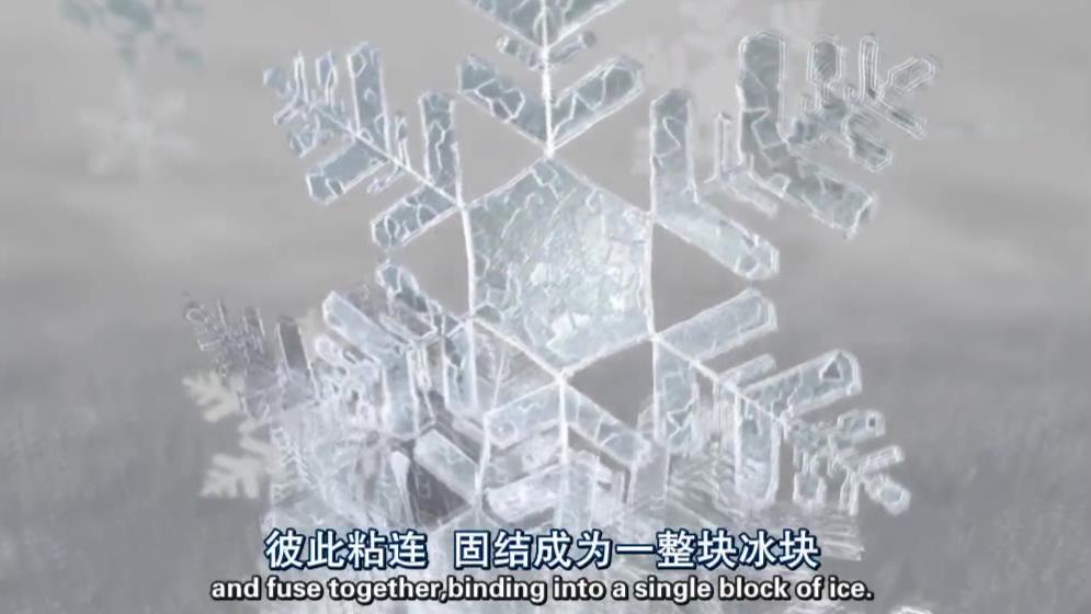 【纪录片】【无畏的地球】【阿拉斯加】【双语字幕】【1080P】【2013】