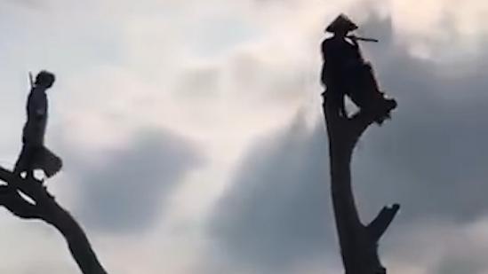 《华 山 论  剑》