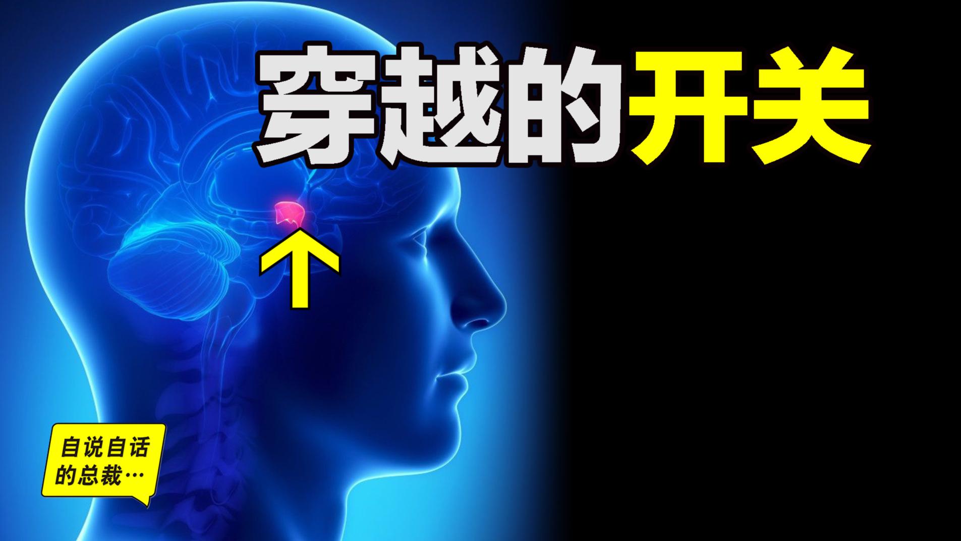 穿越到未来的开关,就在你到大脑中,其中还隐藏着世界的真相⋯⋯