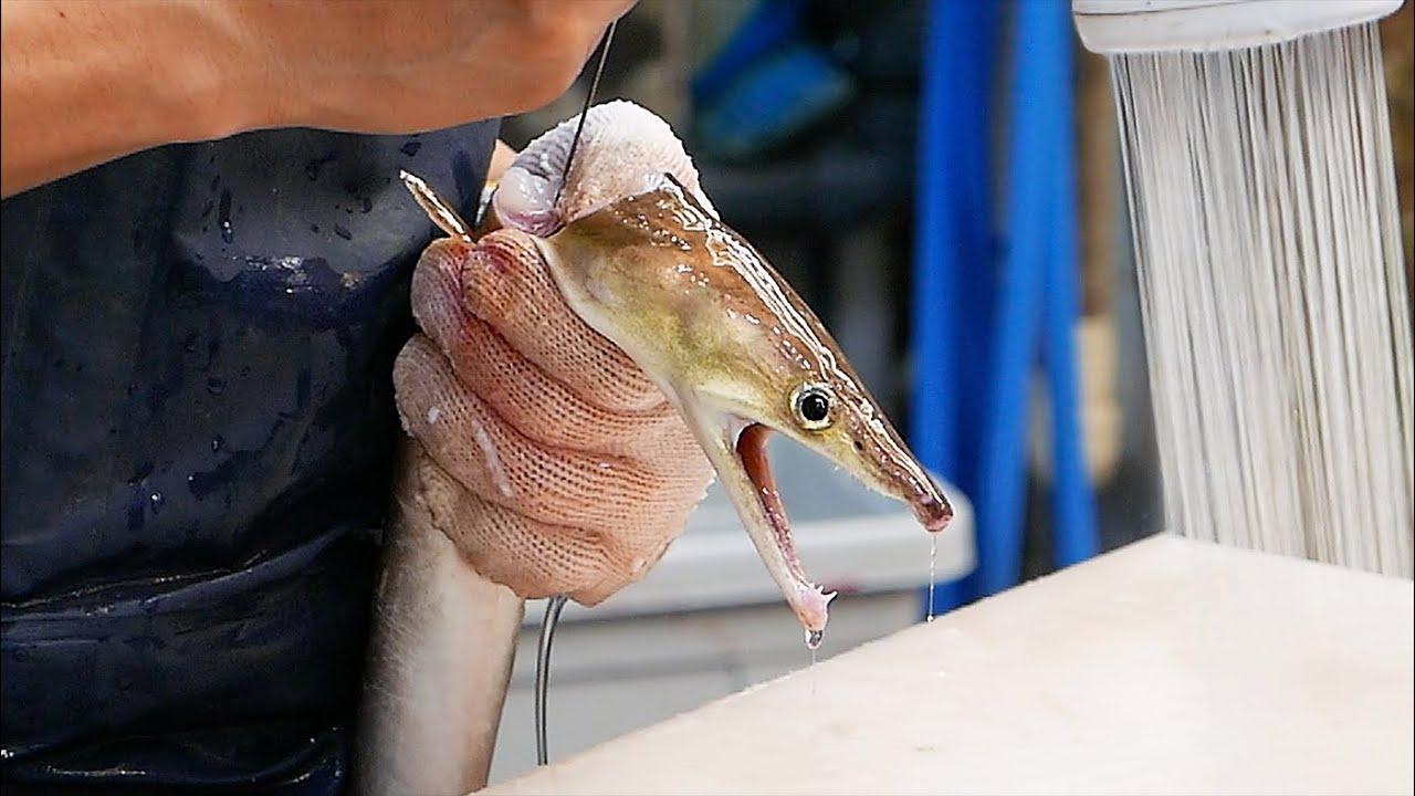 日本大厨展示传统日式烤鳗鱼,鳗鱼还活蹦乱跳的就被收拾了!