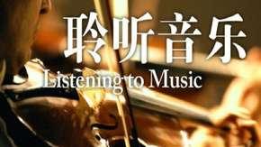 【耶鲁大学开放课程】【聆听音乐】【2010】【中英双字】【08 贝斯风格:布鲁斯和摇滚】