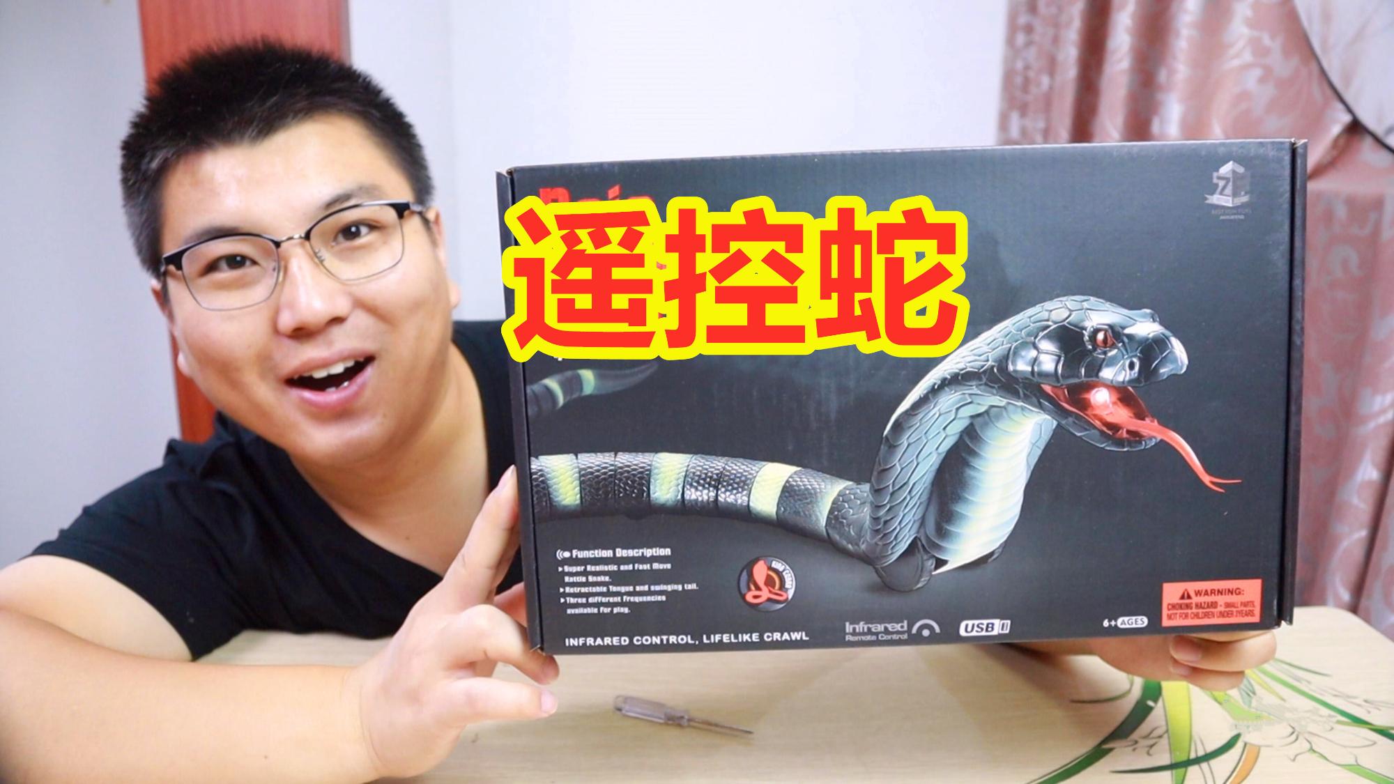 遥控眼镜蛇太逼真了,老婆被吓了一跳,下个月的零花钱没了