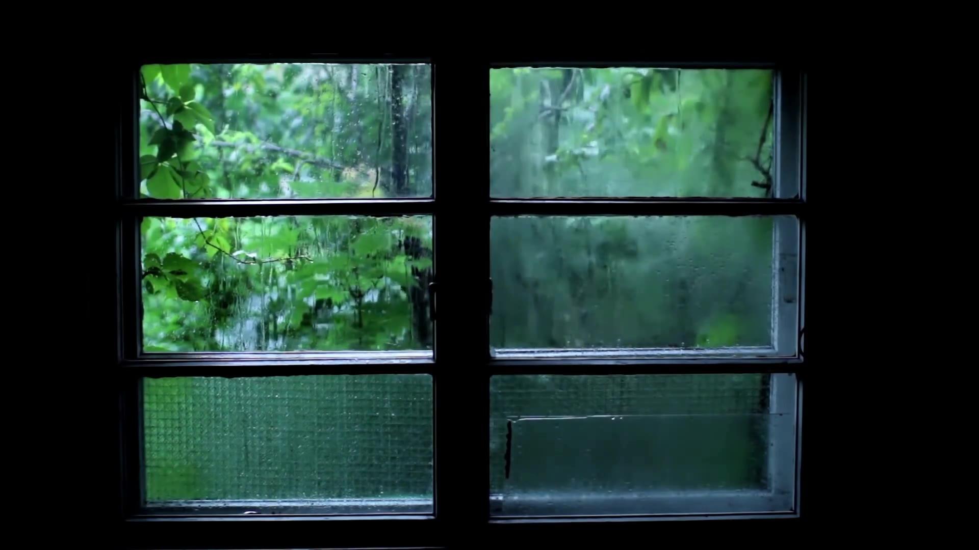 【自然 治愈】聆听窗外雨声(适睡眠 放松 发呆时)
