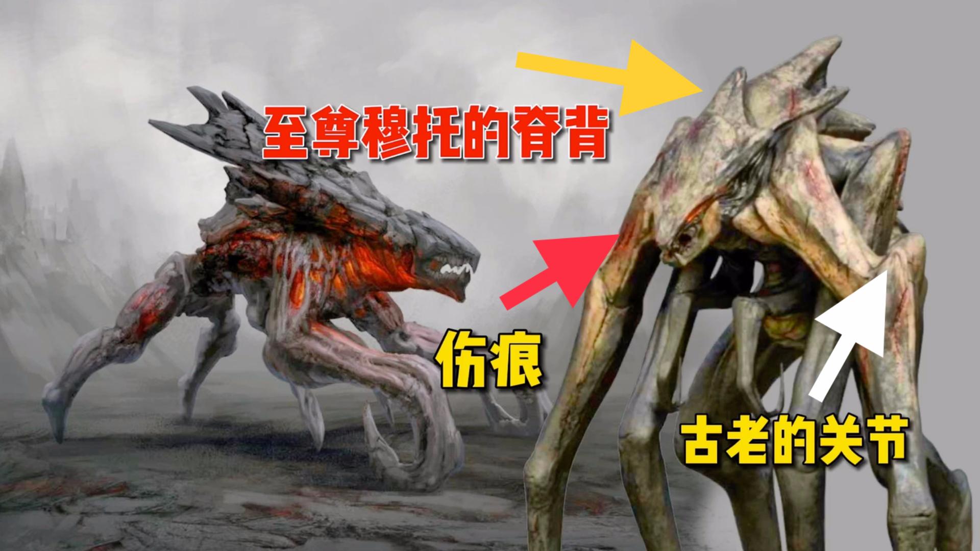 哥斯拉怪兽宇宙科普,女王穆托符合远古泰坦级别吗,雄穆托有多重