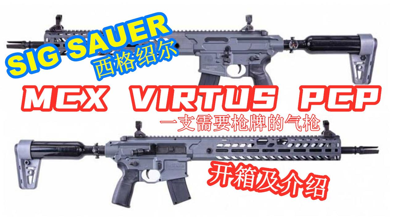 西格绍尔SIG MCX Virtus开箱及介绍 | 口径.22 | 需要枪牌的气枪 |【加拿大拍摄】