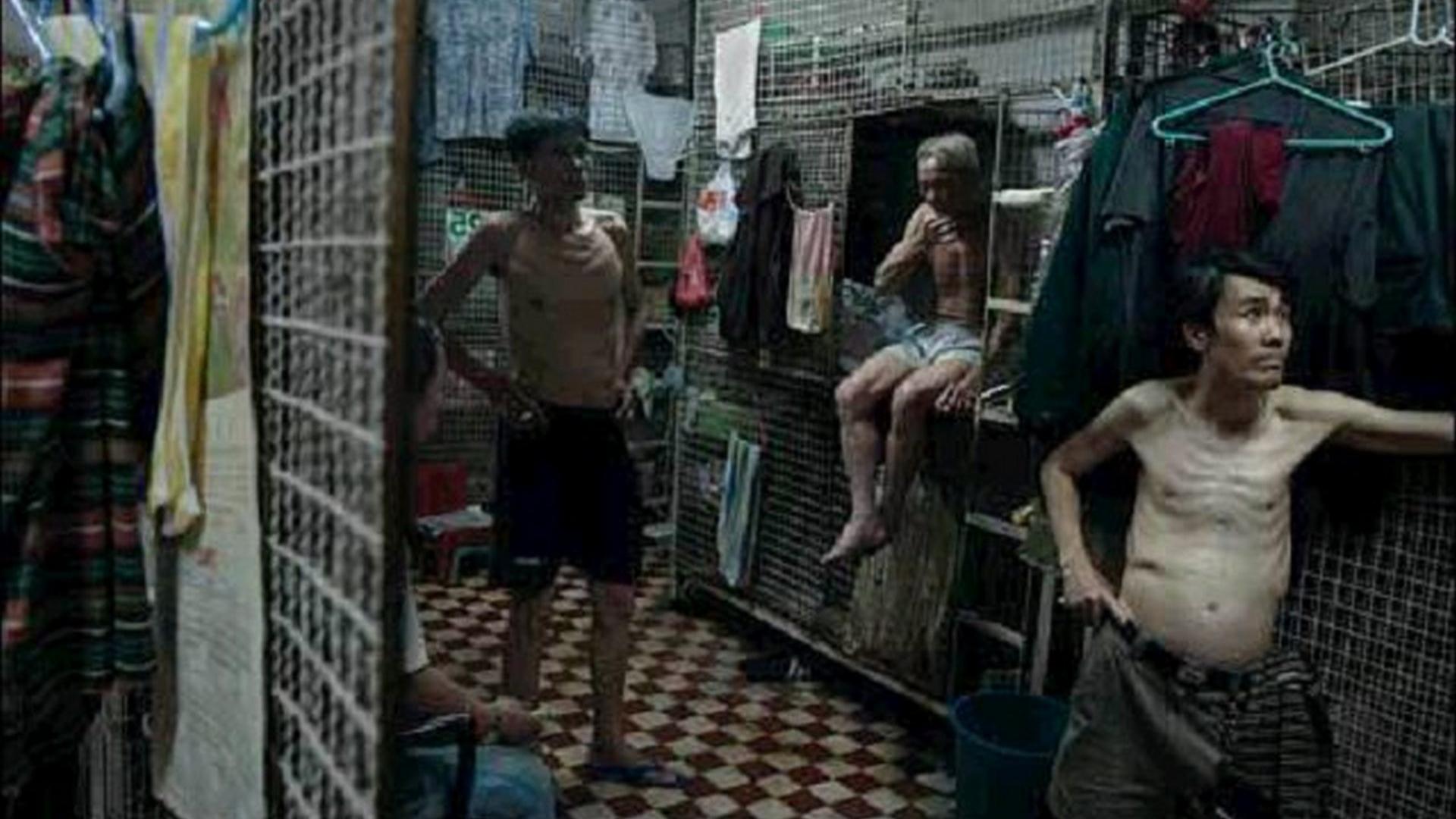 【阿斗】被遗忘的经典电影!被称作香港影史十佳,香港底层人民笼子里的辛酸生活《笼民》