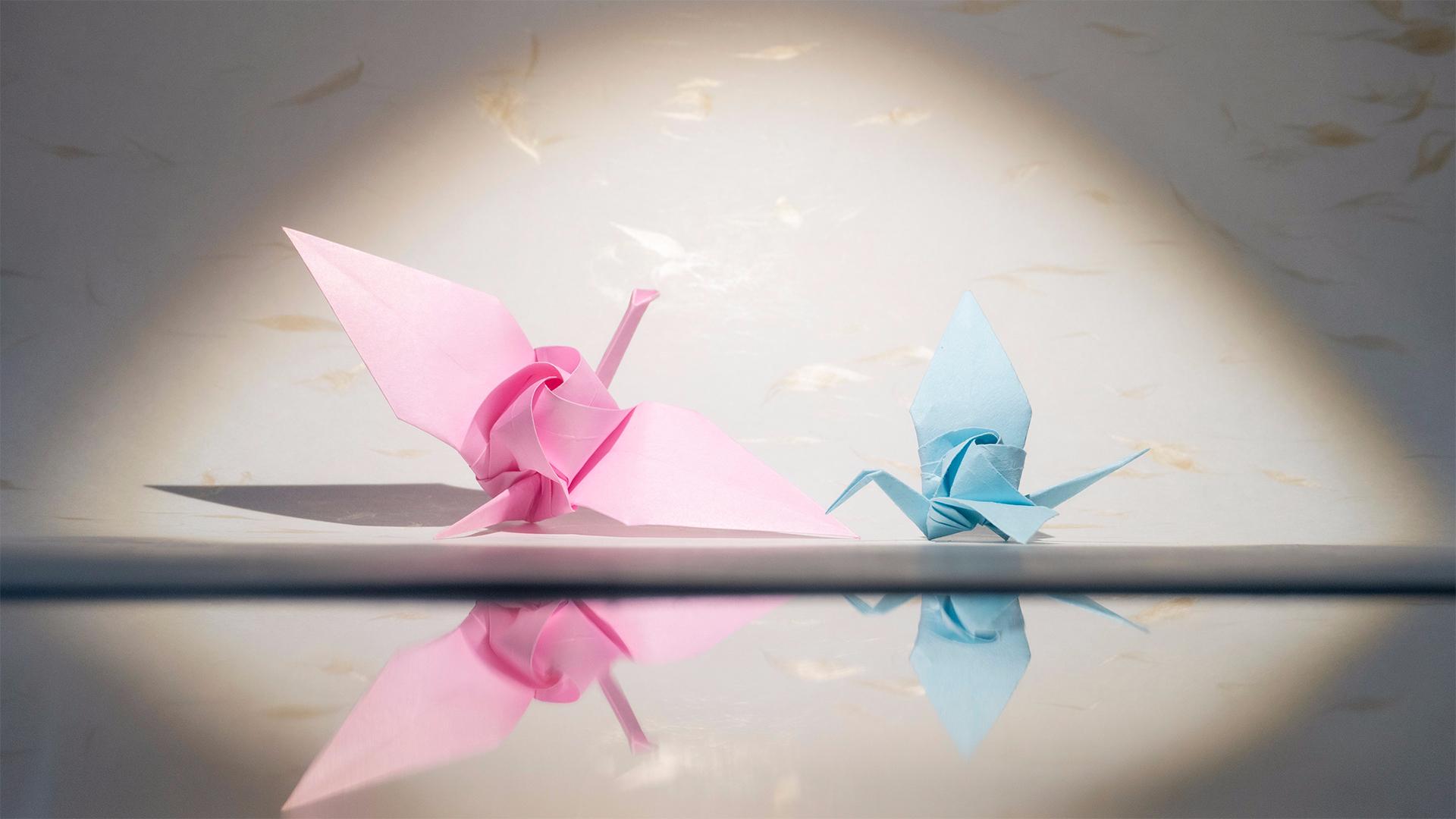 【折纸】嗯?玫瑰?长在了千纸鹤身上?
