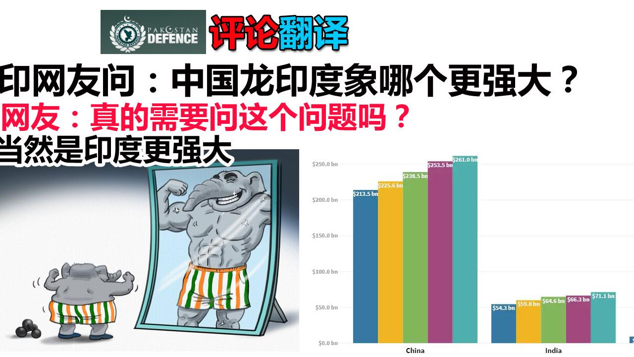 印度网友提问:中国龙和印度象哪个更强大?