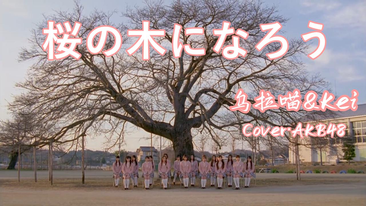 【乌拉喵+Kei】AKB48-桜の木になろう