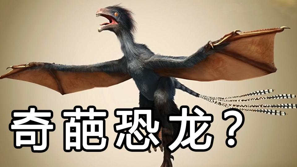 【恐龙时代】神话中的双足飞龙原形是这种恐龙?伤齿龙真的能变成智慧生物吗?  #近鸟类篇02