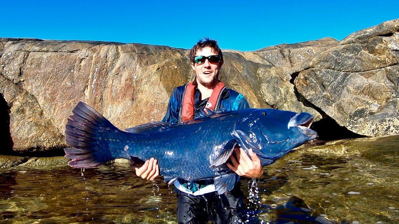 鱼竿都抬不起来?崖钓的海鱼真给力,这样海钓又危险又舒服!
