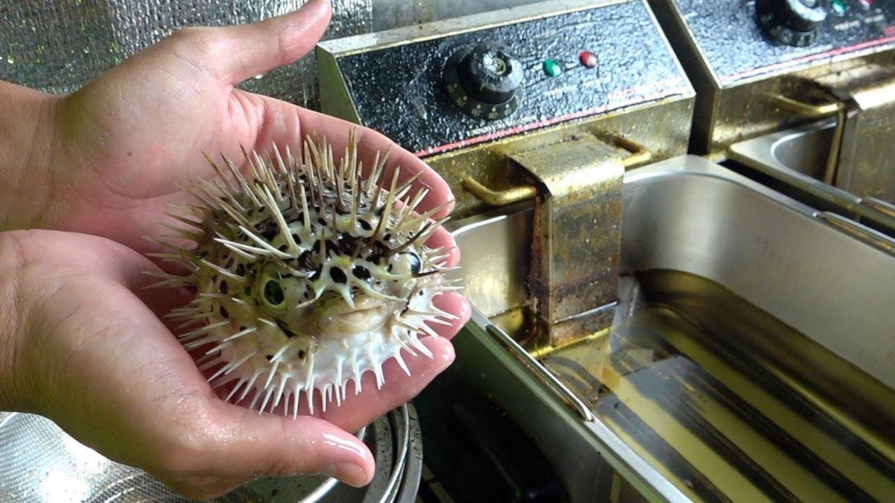 日本是最盛行吃河豚的国度,整只直接炸了一般是技术过硬的大厨,才会这样烹饪河豚!