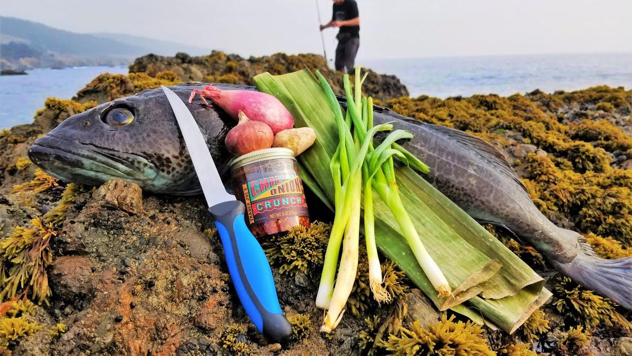 外国老哥去海钓,看到这收获,我都想去了!现钓现吃就是鲜!