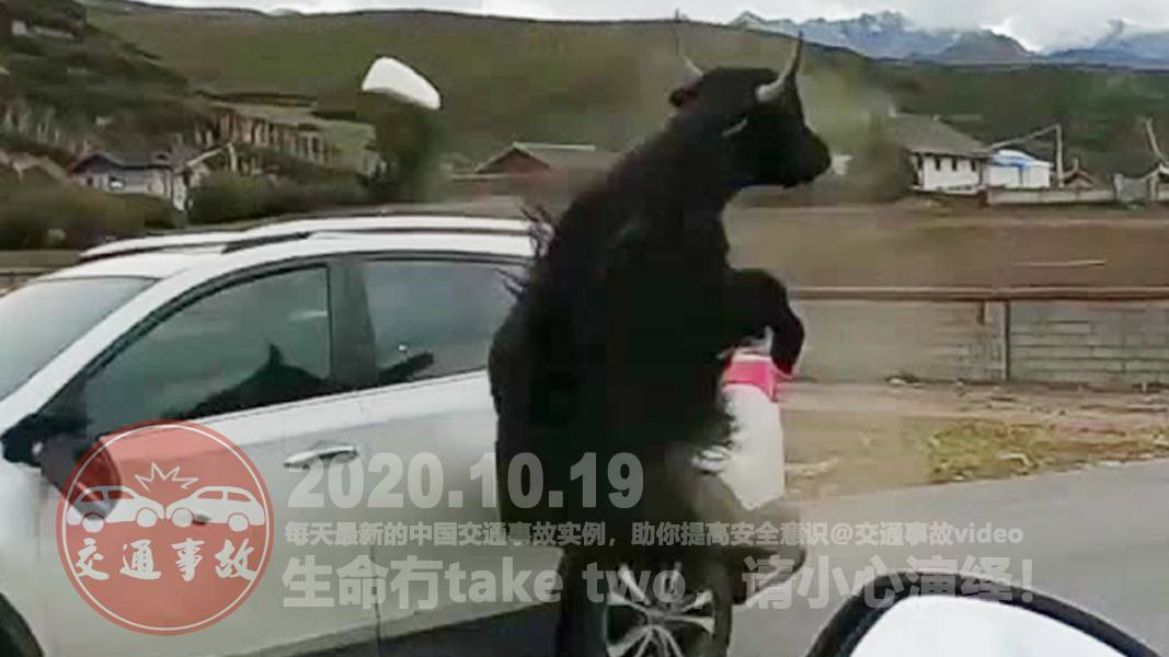 中国交通事故20201019:每天最新的车祸实例,助你提高安全意识