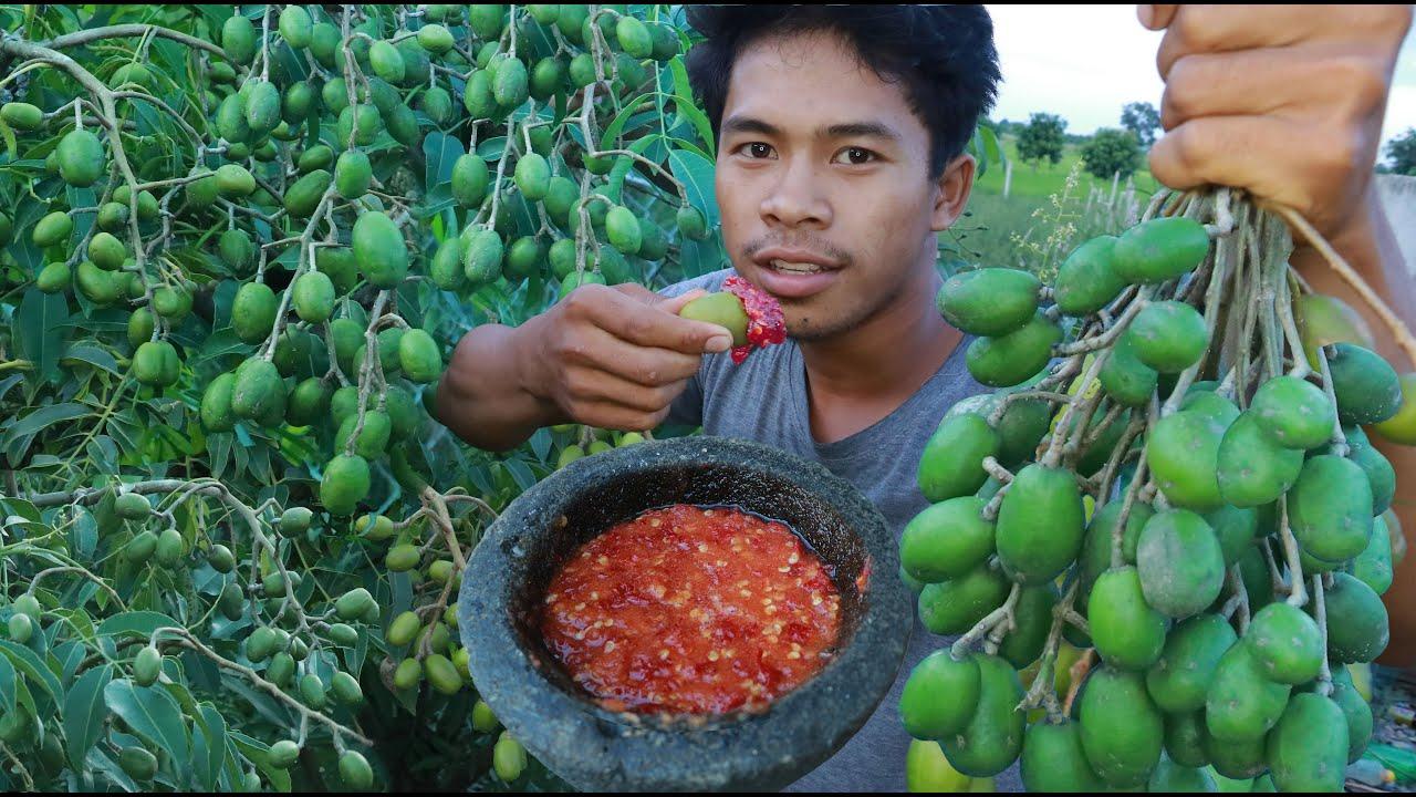 橄榄好吃有诀窍,农村人教你传统方法,做好这一步,橄榄越嚼越香