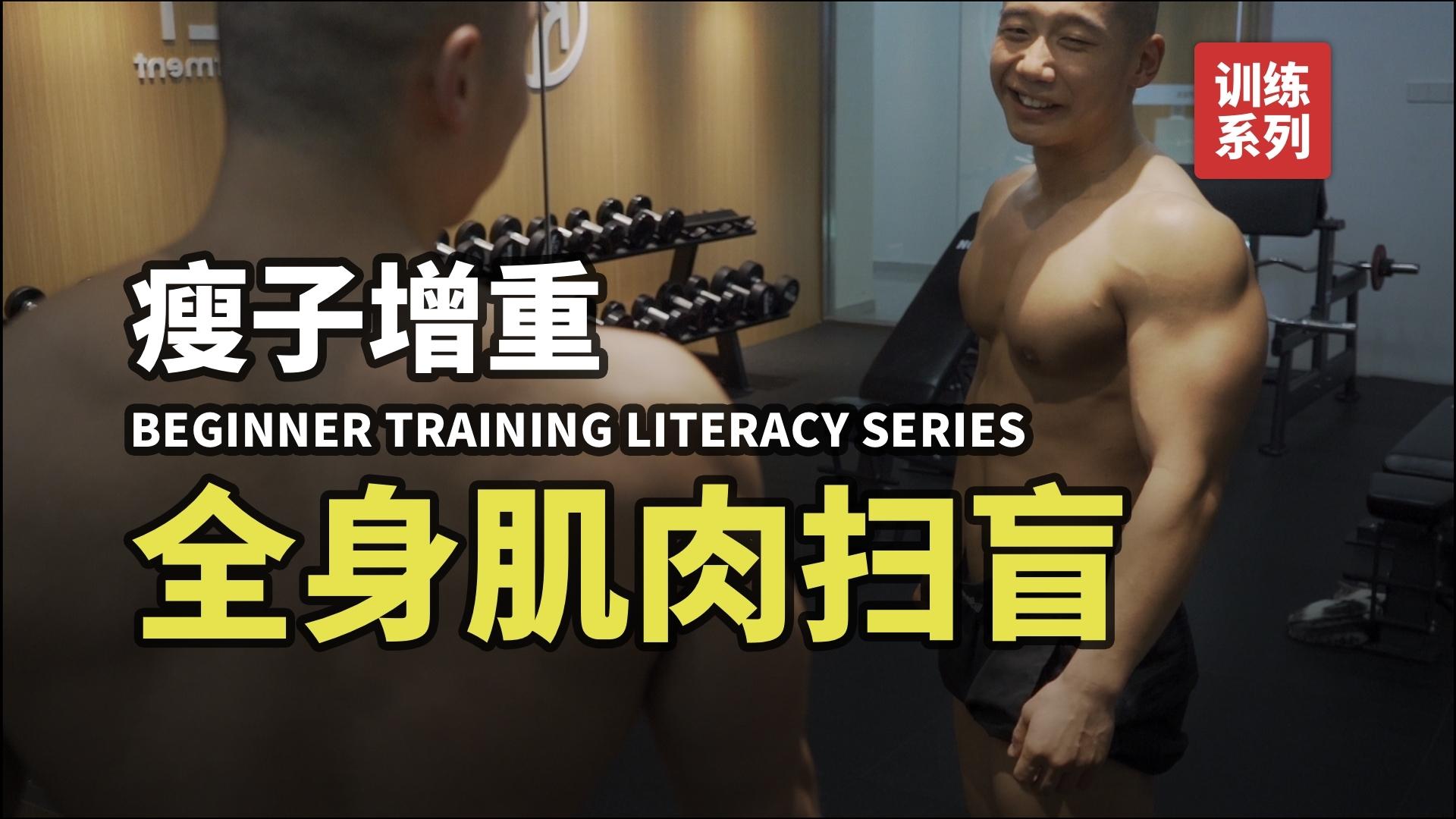 【卓叔】新手训练扫盲01:认识全身肌肉
