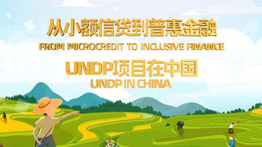 从小额信贷到普惠金融—联合国开发计划署项目在中国