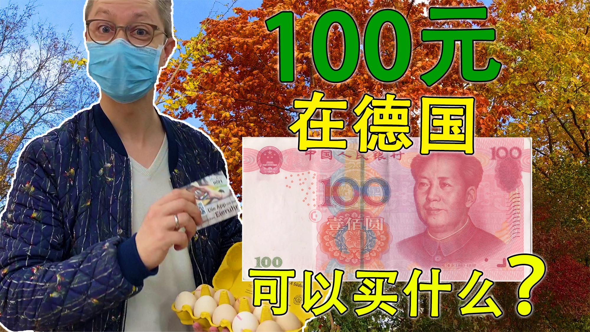 100人民币在德国能买到什么?如何买一次菜吃一个月?