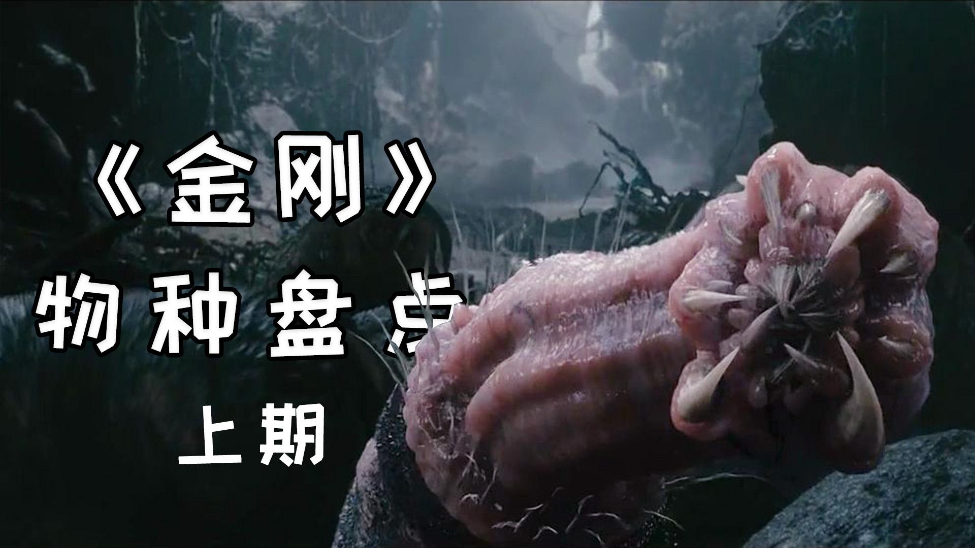 金刚骷髅岛中的物种大起底,可怕的神秘生物将是梦魇的开始