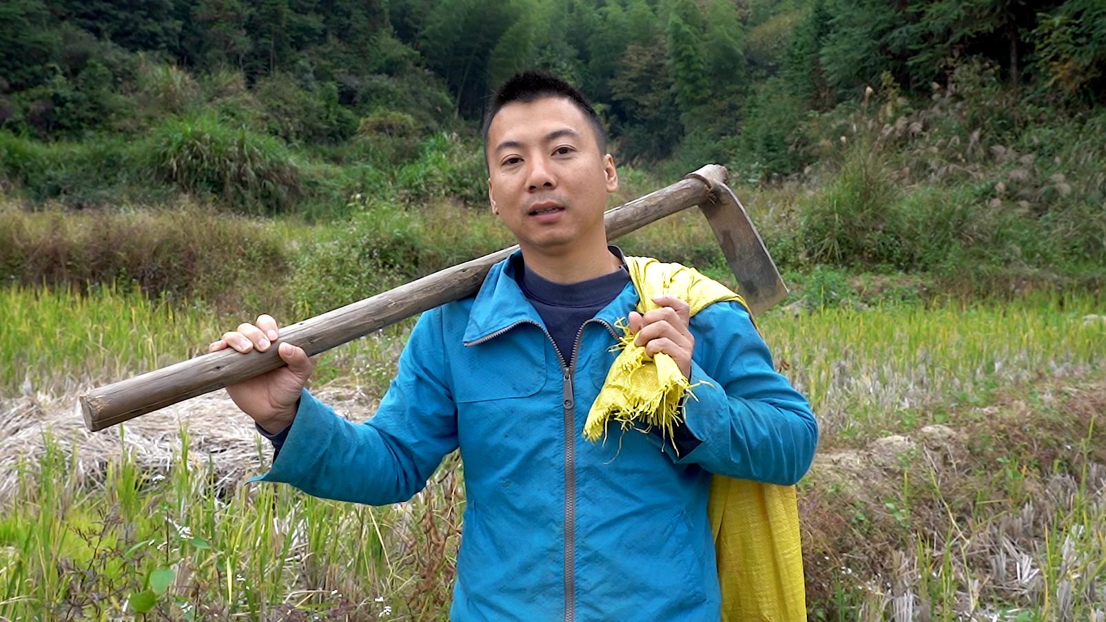 华农兄弟:猴急去挖冬笋,没挖到,只好抓只老刘家的鸭炖