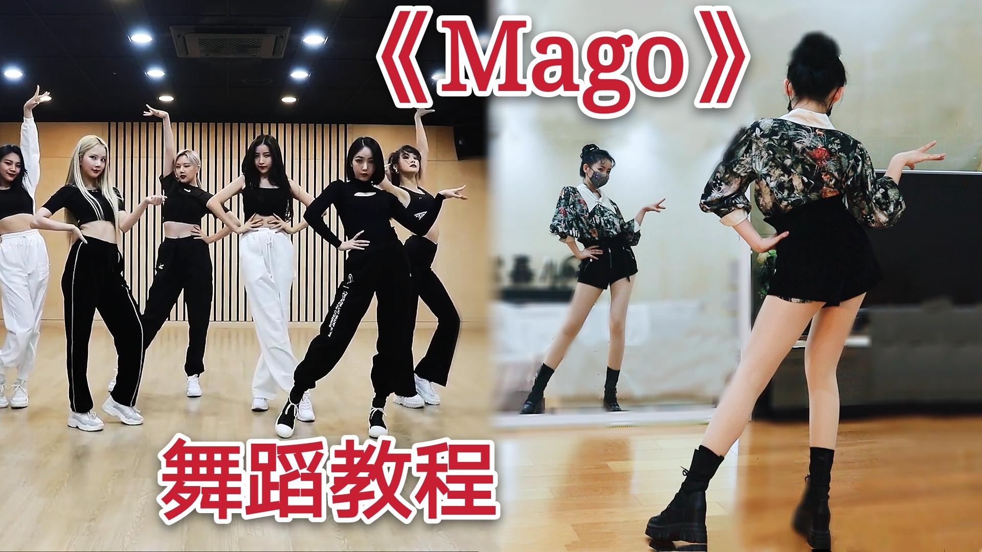 【紫嘉儿】一起摇花手!GFRIEND《MAGO》舞蹈动作分解教程✿镜面教学