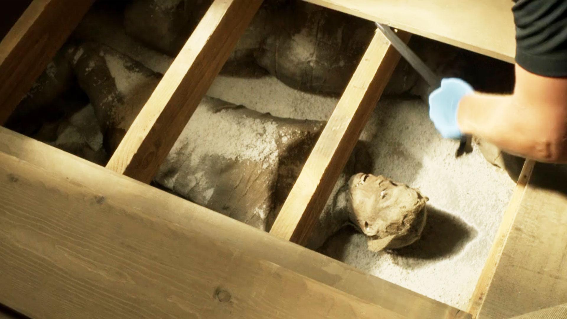干尸奇案:夫妻购廉价新房,却发现屋内藏有10多具干尸,手法奇特