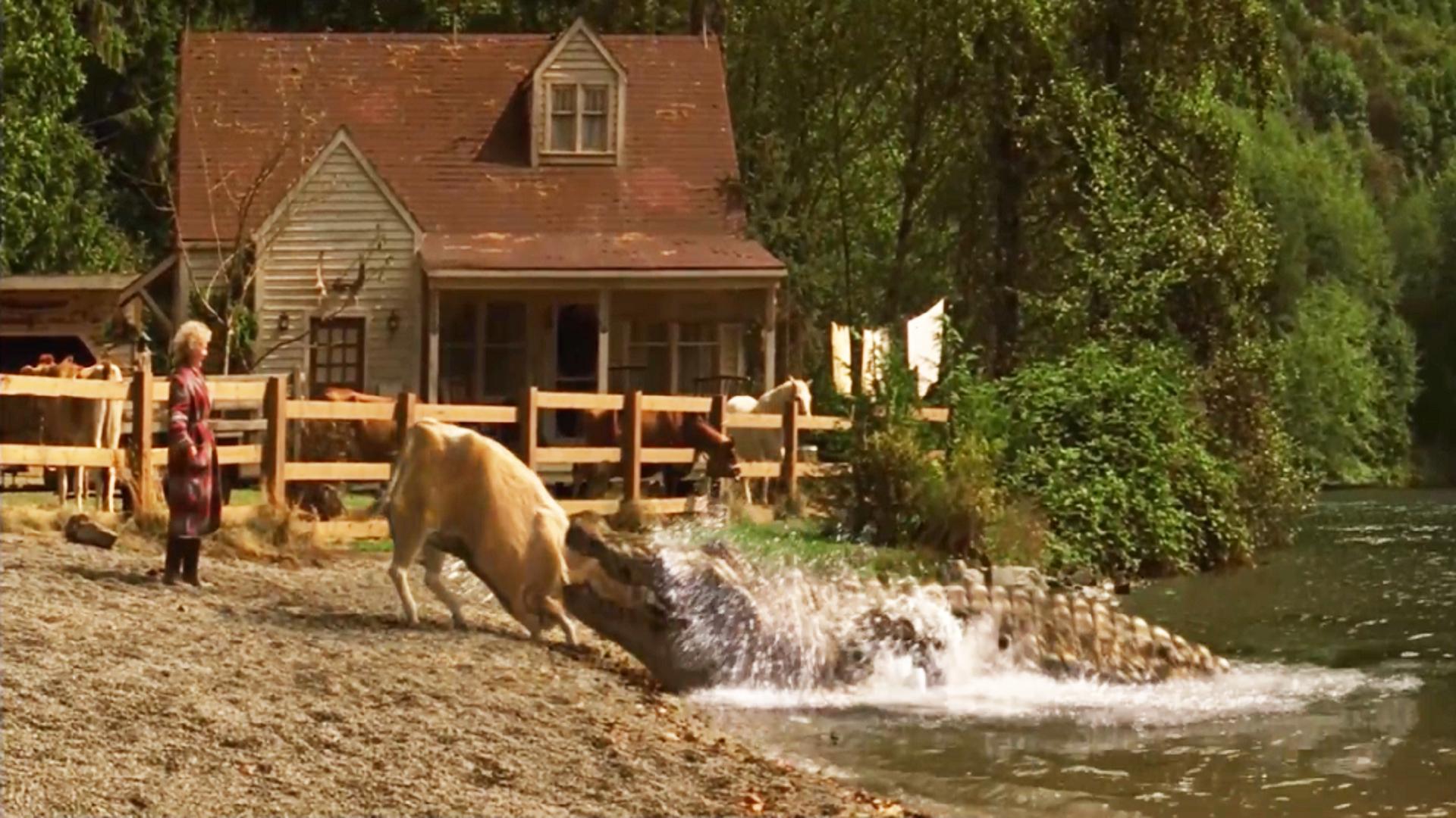 老太太养巨鳄当宠物,一顿喂它一头牛,甚至丈夫也成了饲料