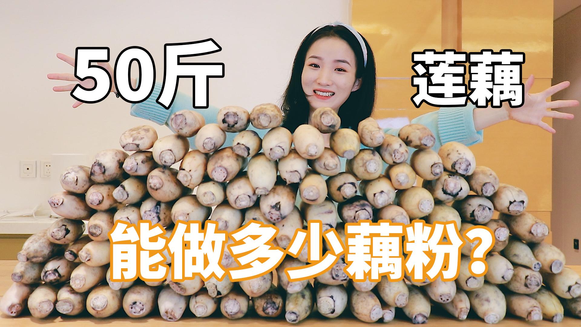 一姑娘花500块买了50斤莲藕,花4天时间做成藕粉,到底能做多少?