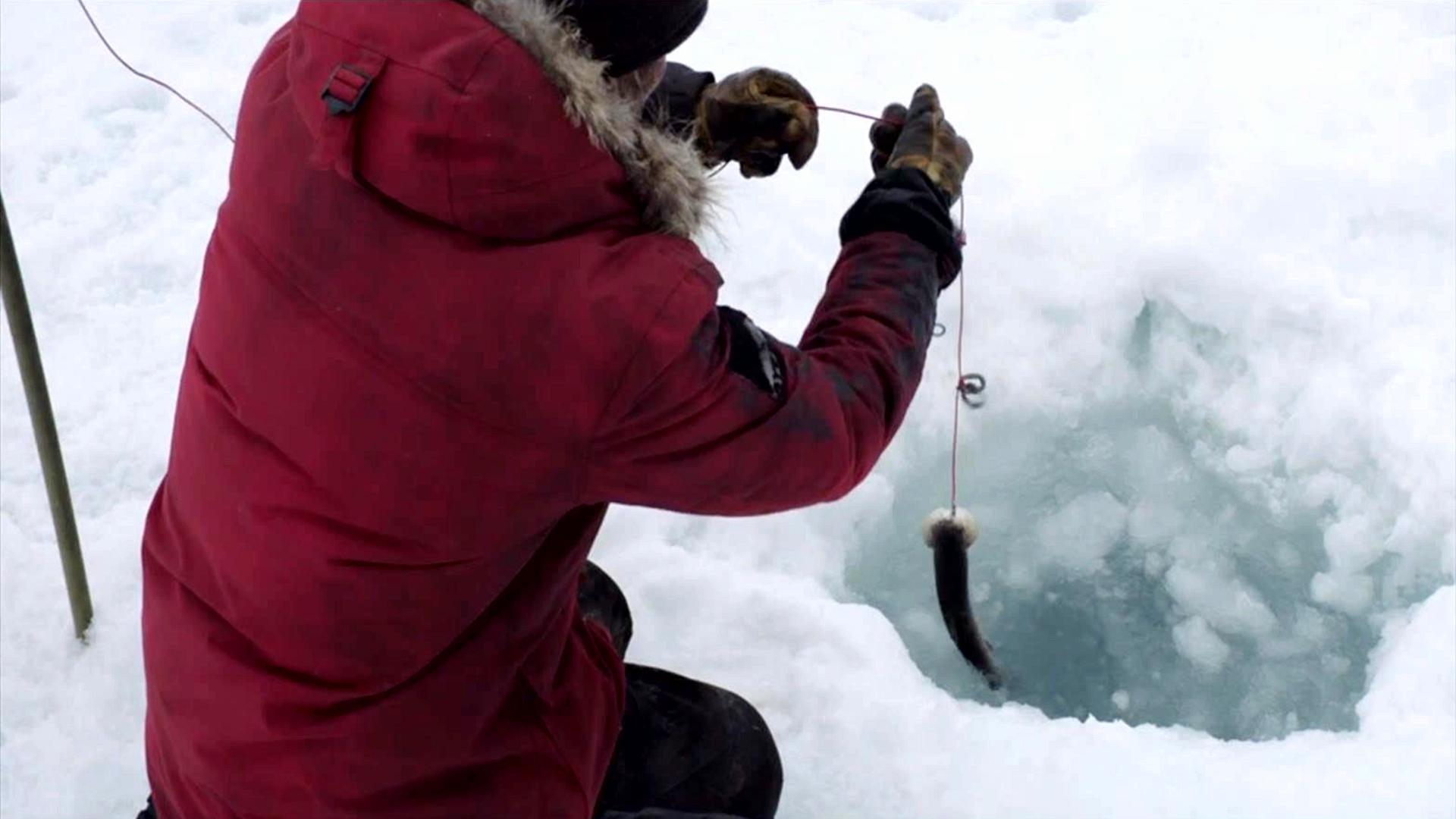 大叔被困北极无人区,没办法点火,钓的三文鱼只能生吃,冒险片