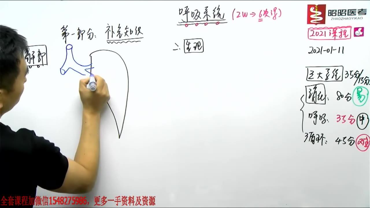2021昭昭医考呼吸系统最新视频课程-解剖和生理