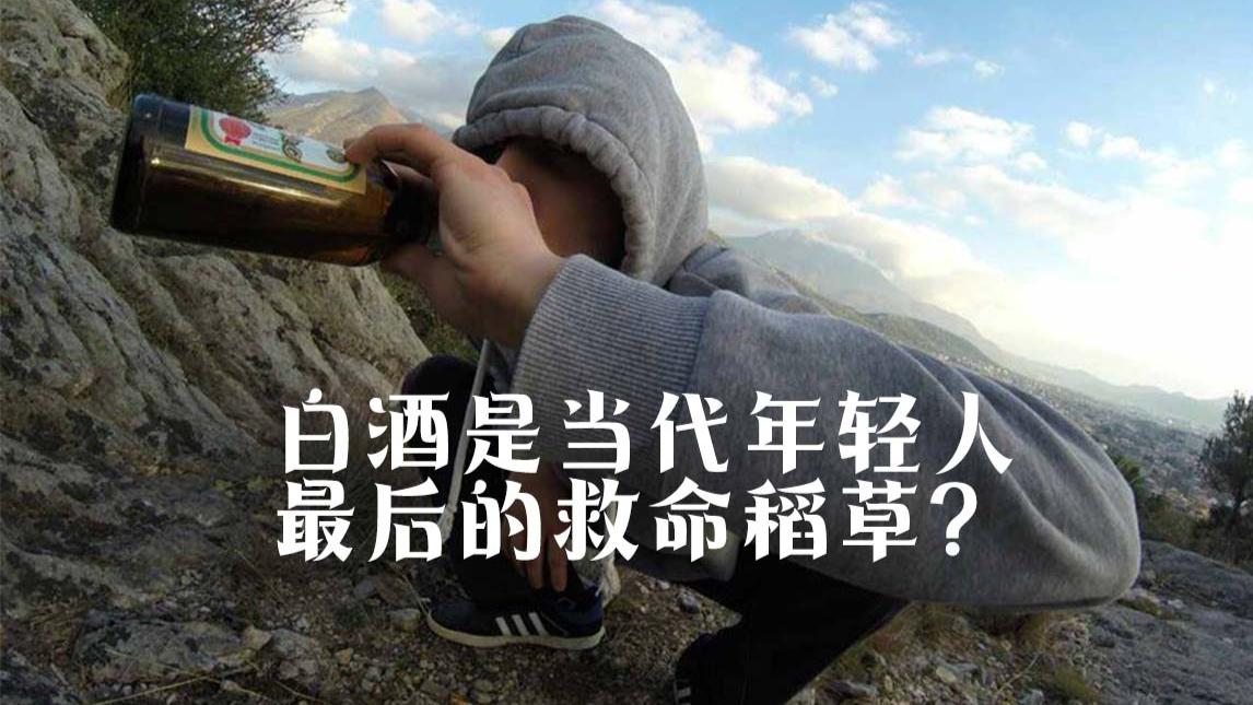 白酒是当代年轻人最后的救命稻草?