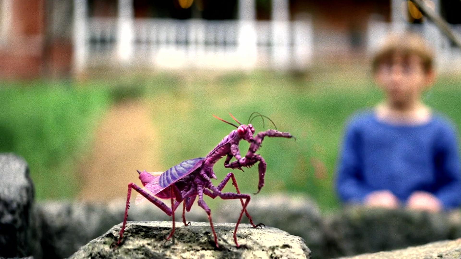 农场里落下一颗紫色陨石,结果导致附近生物全部变异,科幻电影