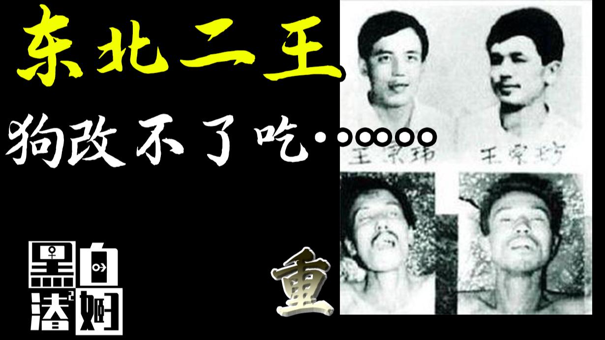 疯狂逃窜7个月,3万警力围剿才覆灭的东北二王 | 黑白夫妇