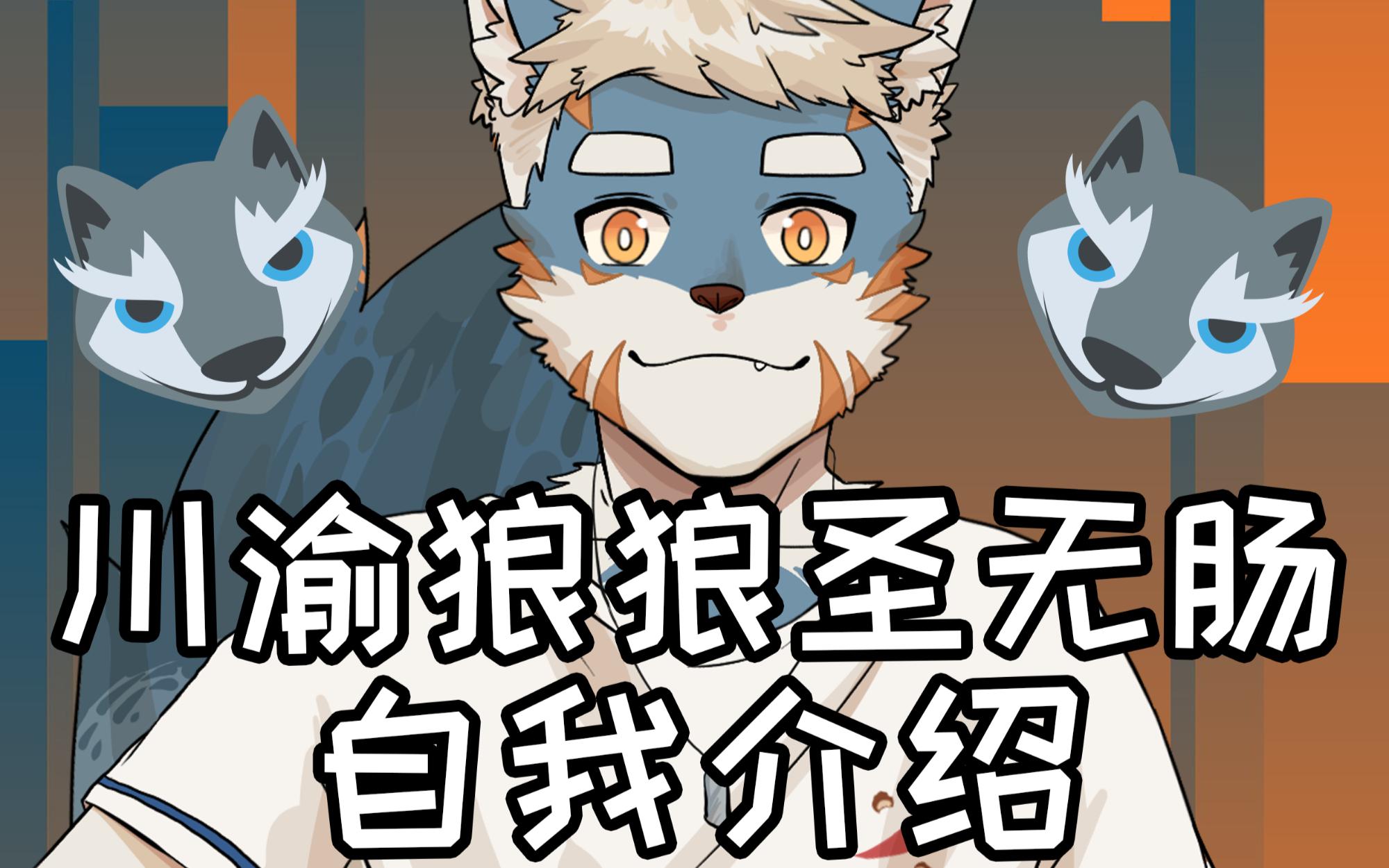 【狼狼圣无肠】川渝的狼狼来了哦!