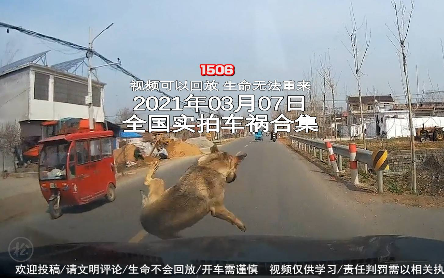 1506期:司机酒后驾车出去寻找走丢的狗狗,把人家大门撞了【20210307全国车祸合集】