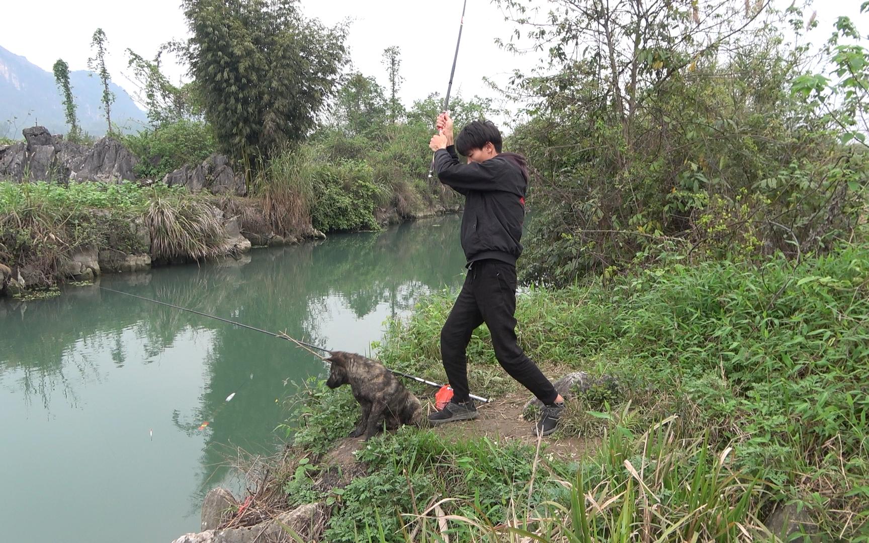 小明河边野钓遇鱼群咬钩,惊喜一个接一个,甩竿甩得太过瘾了
