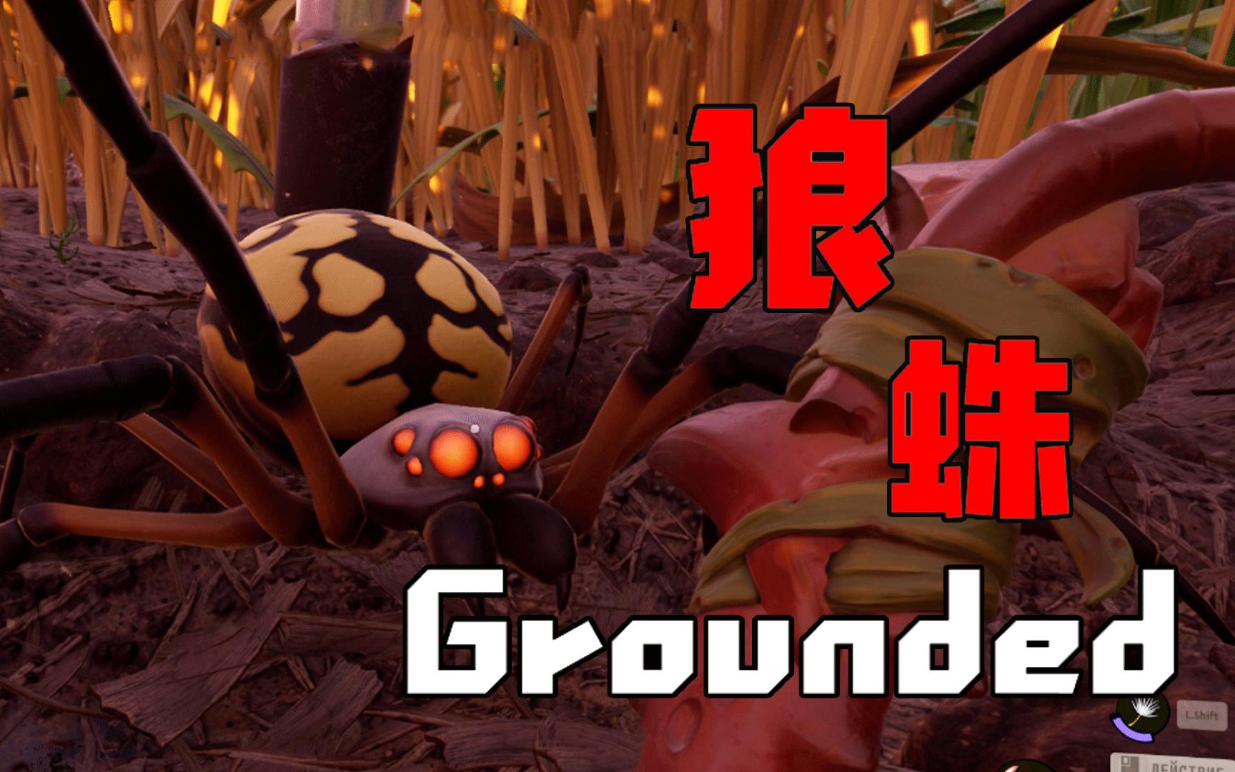 【天骐和茶茶】花园生存02 大蜘蛛让我吓尿了