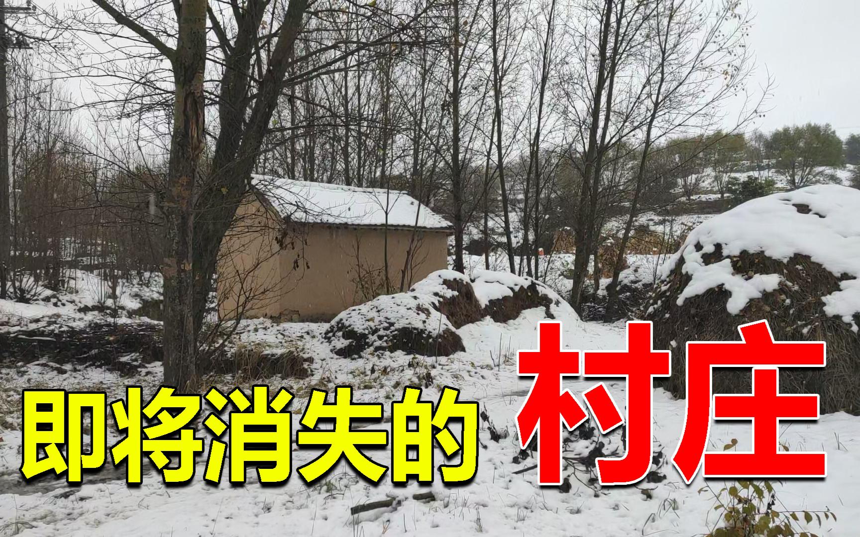 宁夏西海固地区,360多人的村子只剩下了4户人家,面临荒废