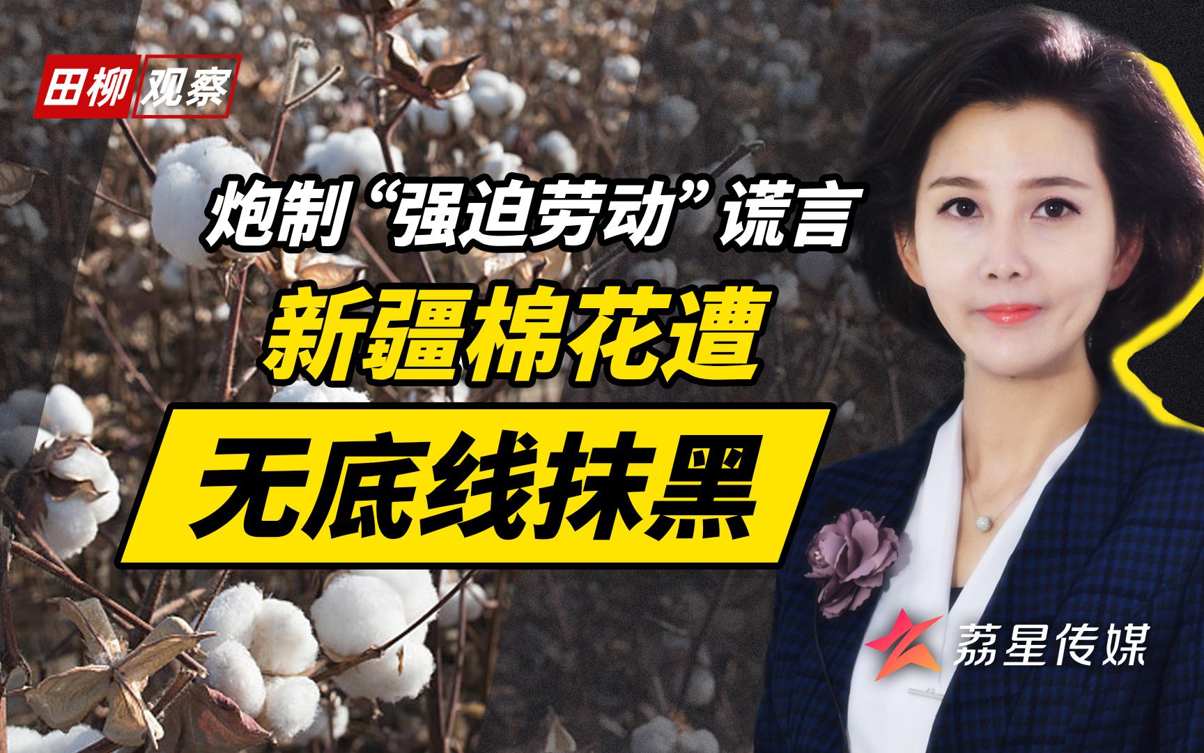 抹黑新疆棉花:西方国家嘴上都是主义,心里都是生意